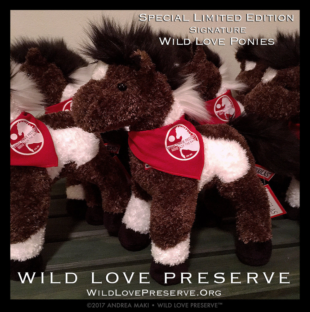 Our Limited Edition Signature Wild Love Ponies. Donate $100+ and receive this special gift from the wild side.