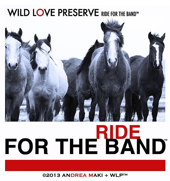 WLP-Ride4Band2013.jpg