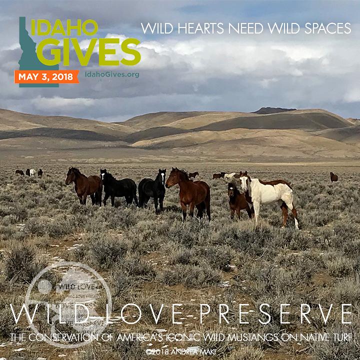 WildHeartsNeedWildSpaces-IdahoGives.jpg