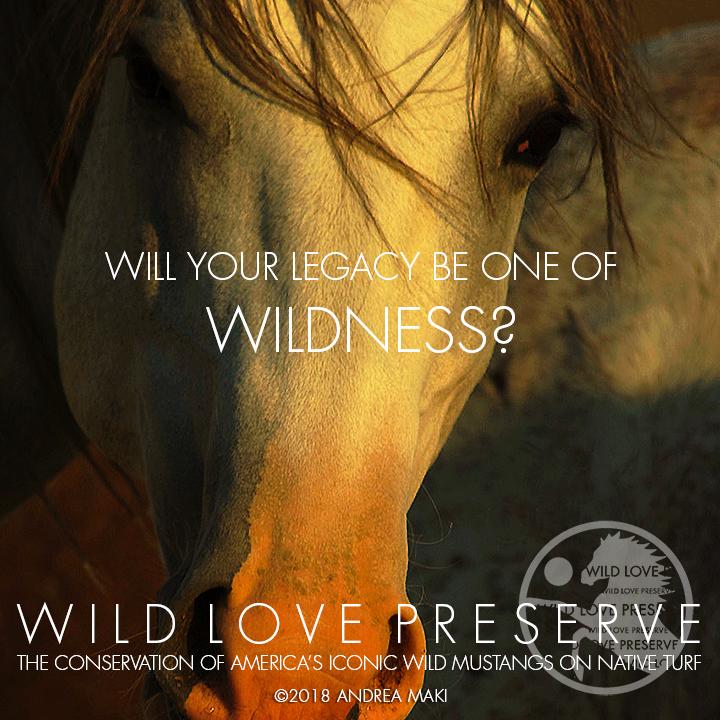 LEGACY-Wildness.jpg