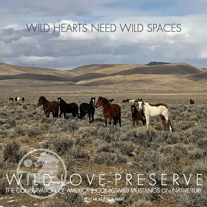 WildHeartsNeedWildSpaces-2.jpg