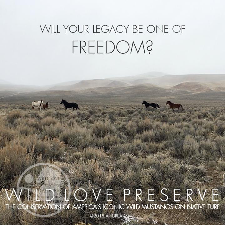 LEGACY-Freedom.jpg