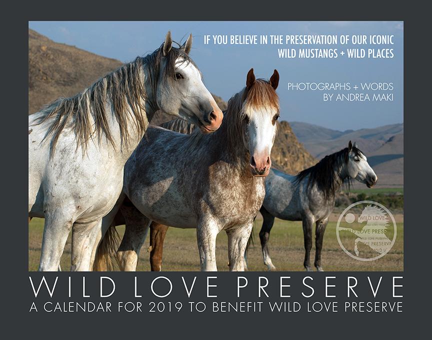 2019WildLove-Calendar-Cover72dpi.jpg