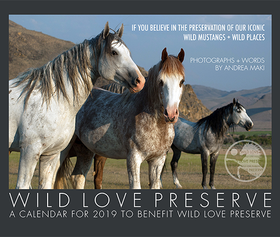 2019WildLove-Calendar-Cover-SM.jpg