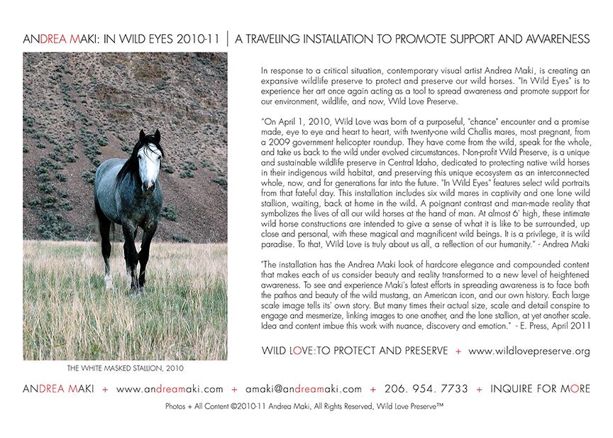 InWildEyes6x9Card-Back-72dpi-B.jpg