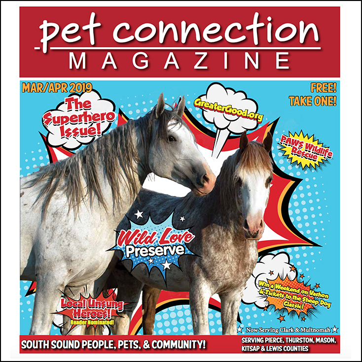 PetConnectMagCover.jpg