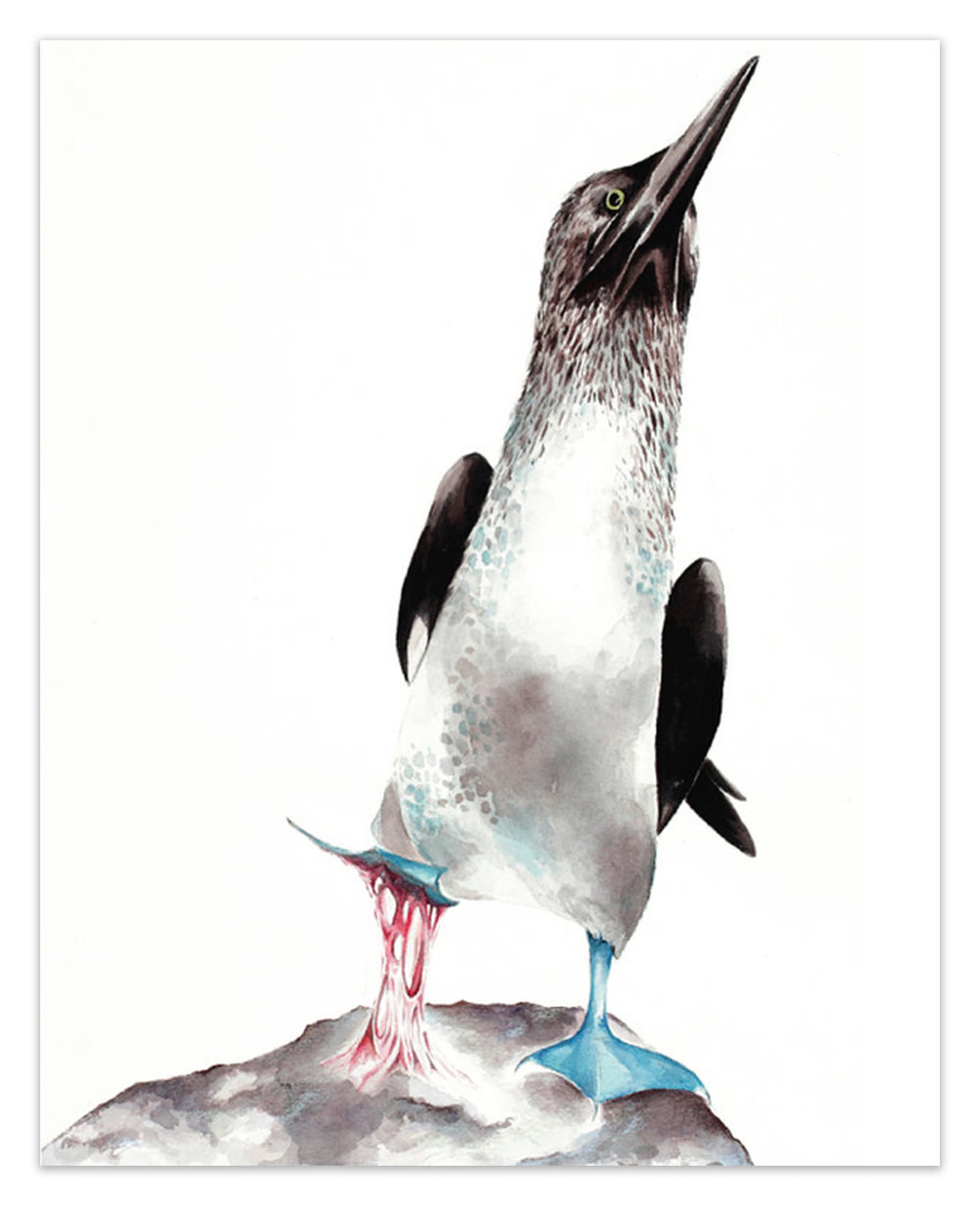 "Sticky Situations: Blue-Footed Booby II.  <br> <span style= ""font-size: 0.75em;""> 🔴  SOLD </span>"