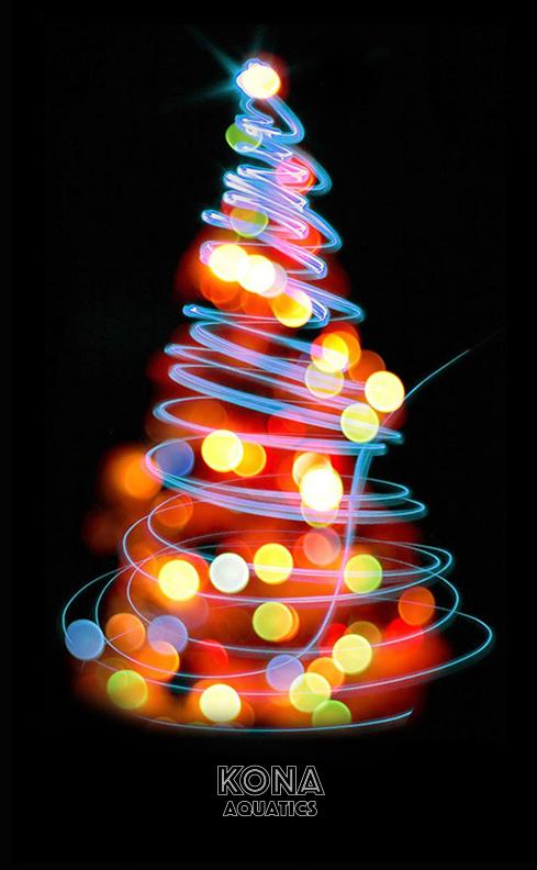 KONA Aquatics Christmas.jpg