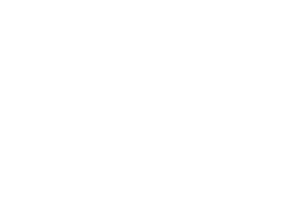 Knoxville Photographers | Alisha Bacon Photography
