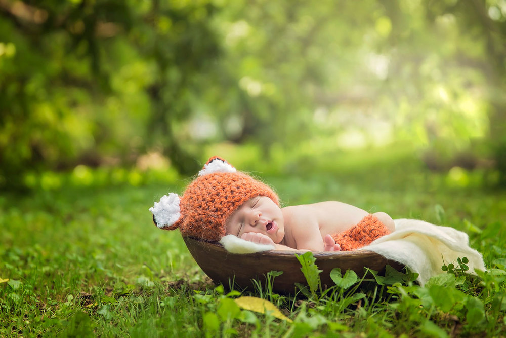 outdoor-newborn-picture-knoxville-fox.jpg