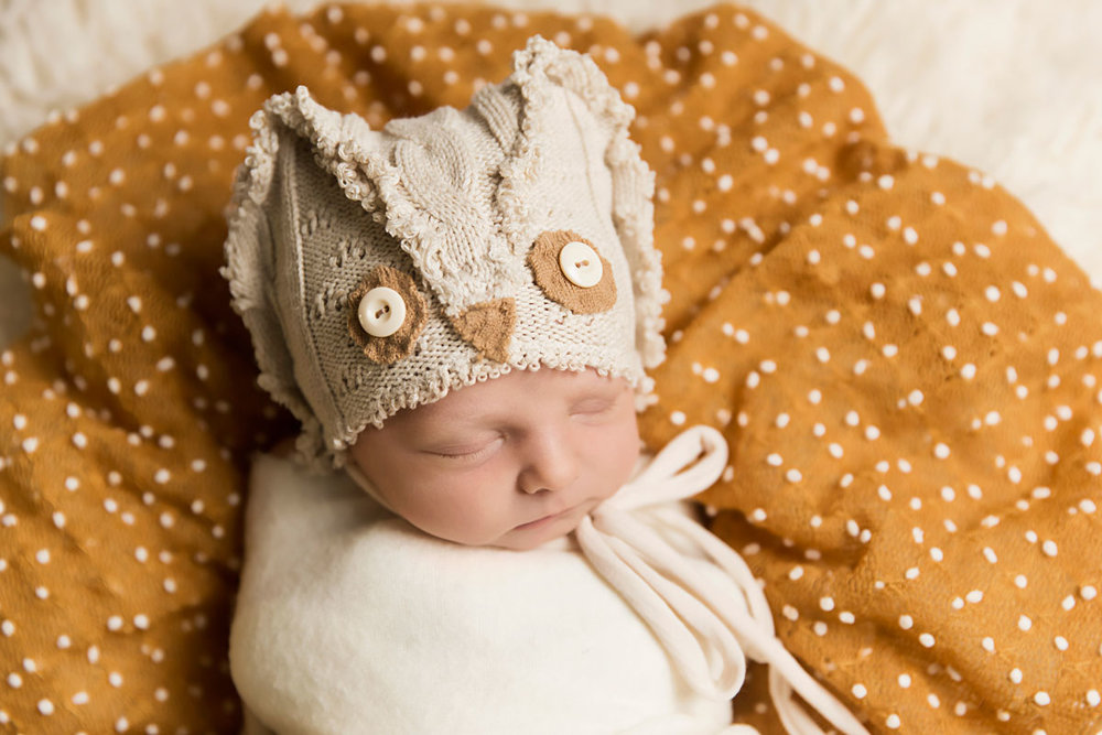 knoxville-newborn-photographer-owl.jpg
