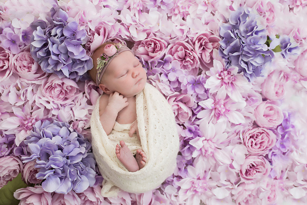 Knoxville newborn girl on purple flower blanket made for her session.