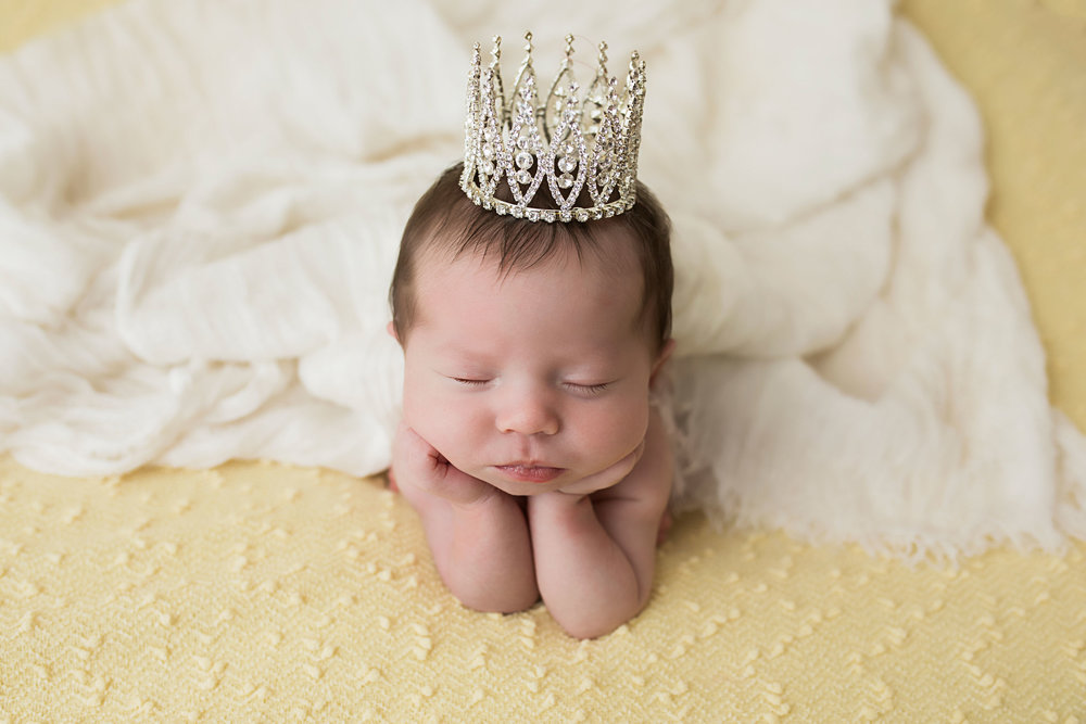 knoxville-floggy-pose-princess-newborn.jpg