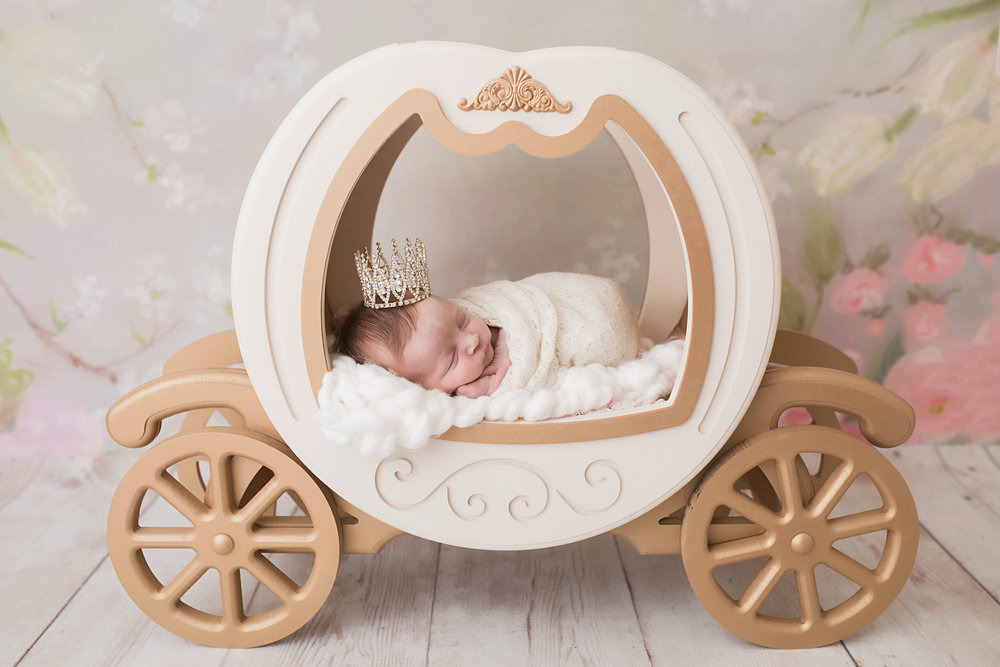 knoxville-newborn-in-princess-carriage-photography.jpg