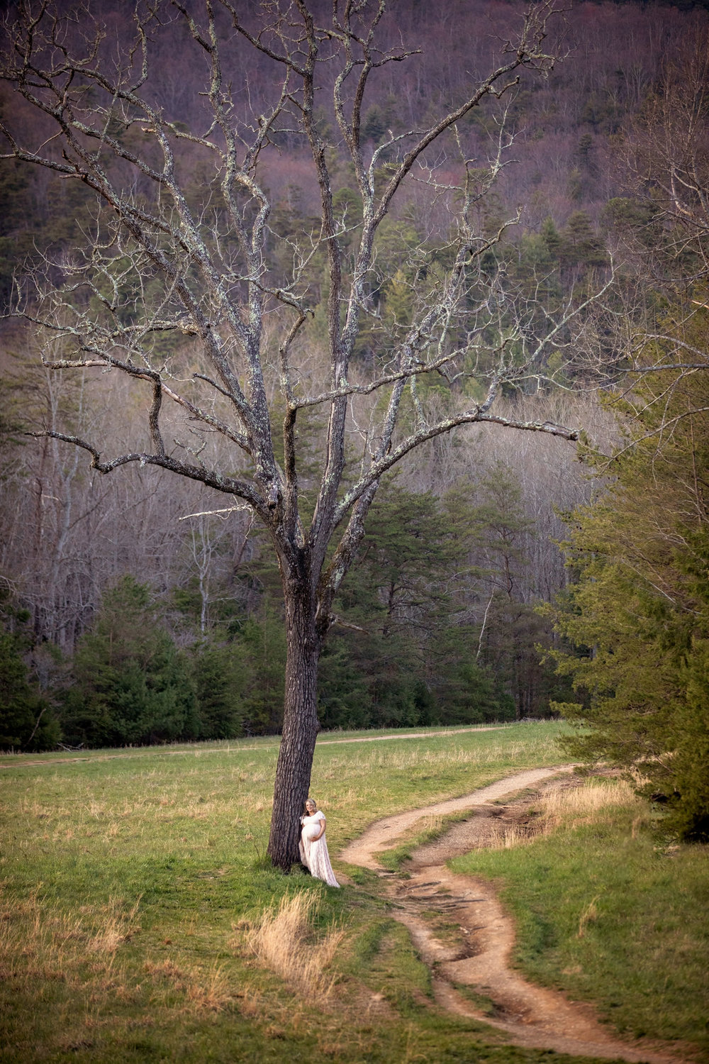 cades-cove-smoky-mountain-maternity-picture.jpg
