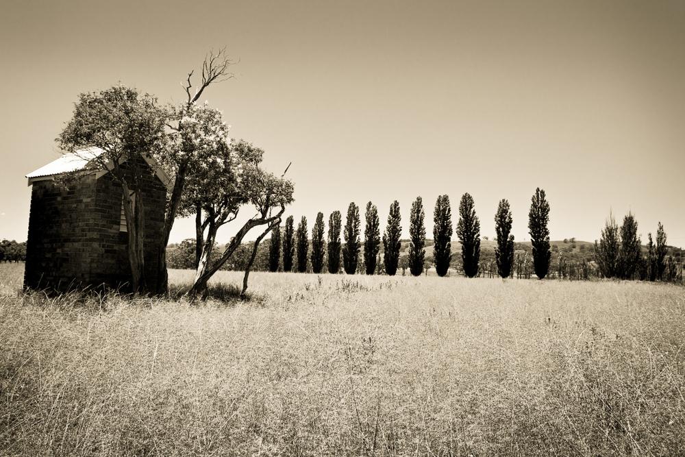 -Daryl James Photography-48.jpg