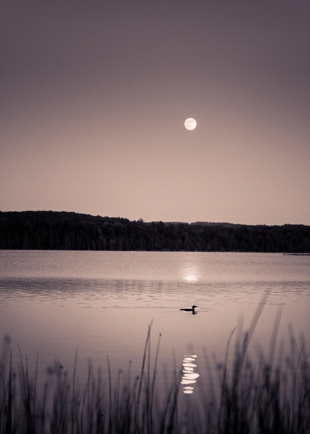 Intermediate Lake, Michigan