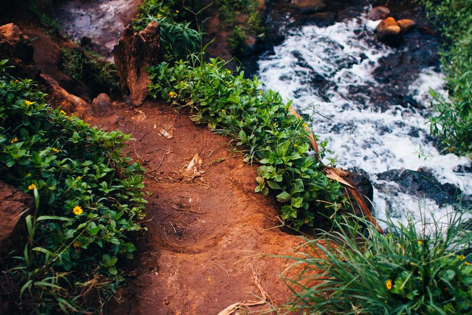 CK-Photo_blog_Kauai-3.jpg