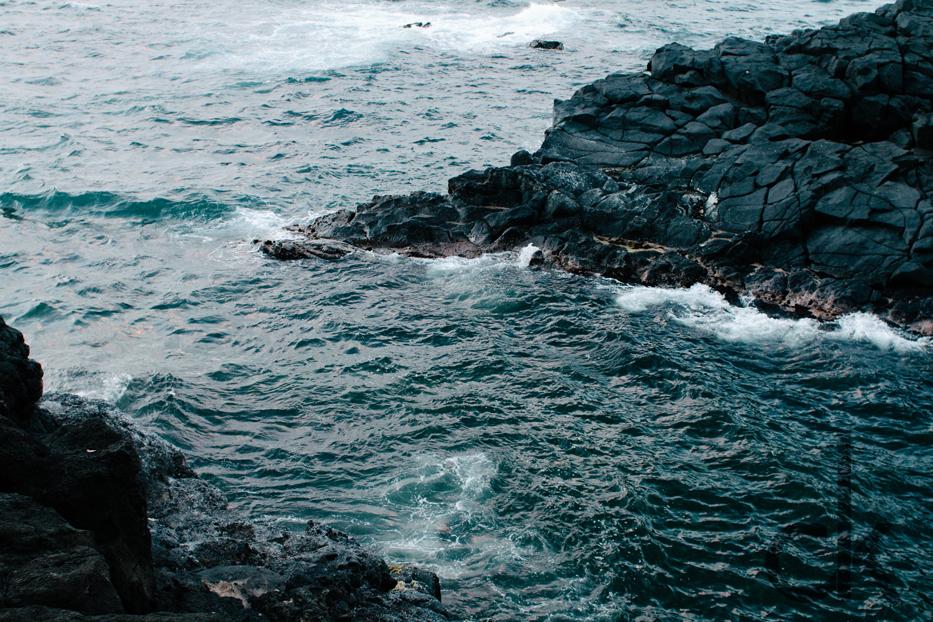 CK-Photo_blog_Kauai-17.jpg