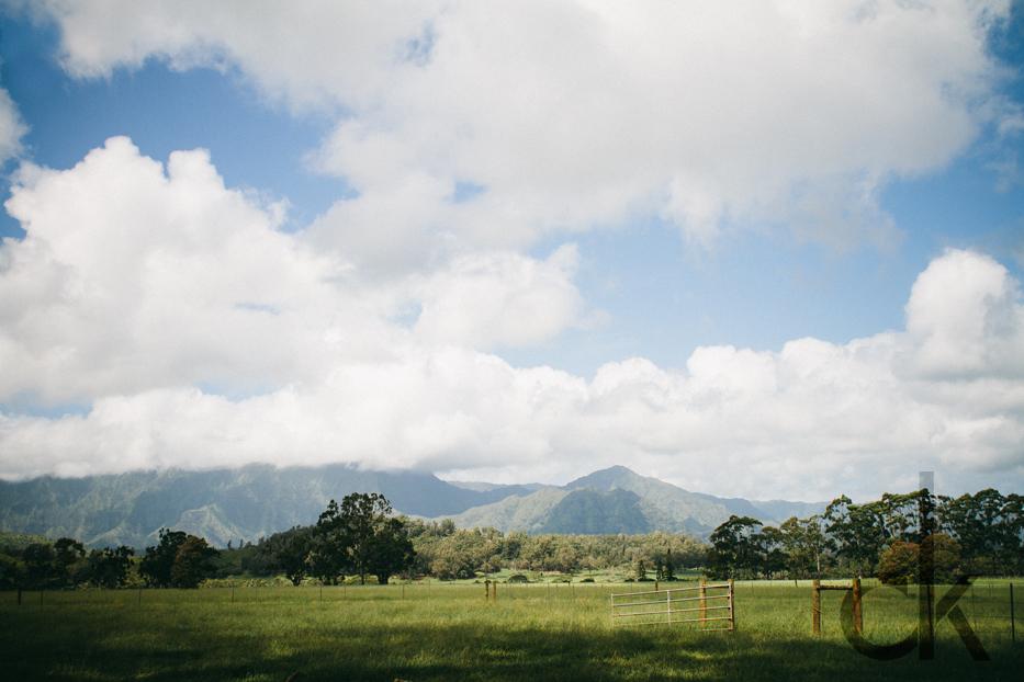 CK-Photo_blog_Kauai-28.jpg