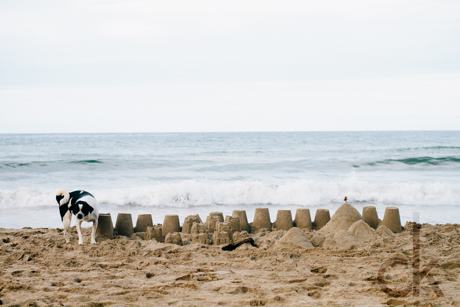 CK-Photo_blog_Kauai-32.jpg