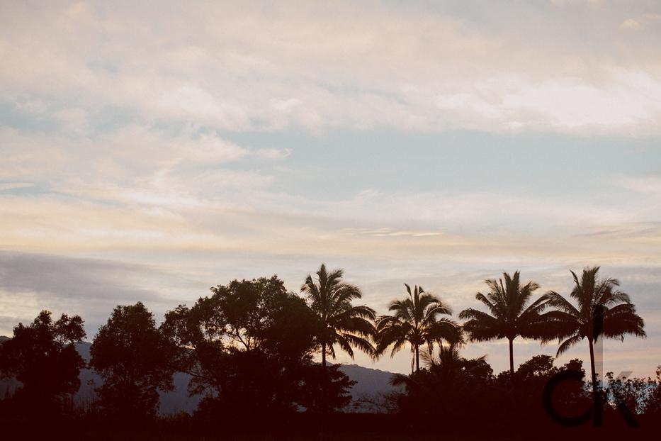 CK-Photo_blog_Kauai-37.jpg