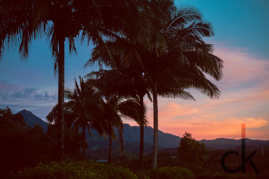 CK-Photo_blog_Kauai-38.jpg
