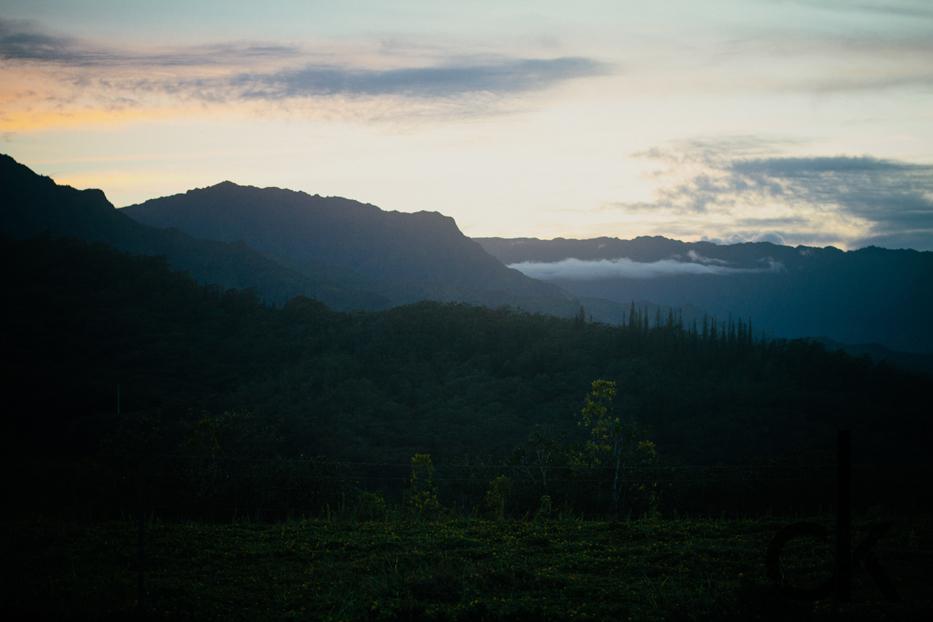 CK-Photo_blog_Kauai-41.jpg