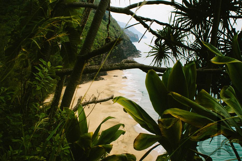 CK-Photo_blog_Kauai-58.jpg