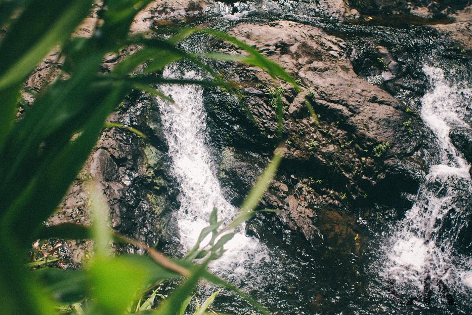 CK-Photo_blog_Kauai-80.jpg