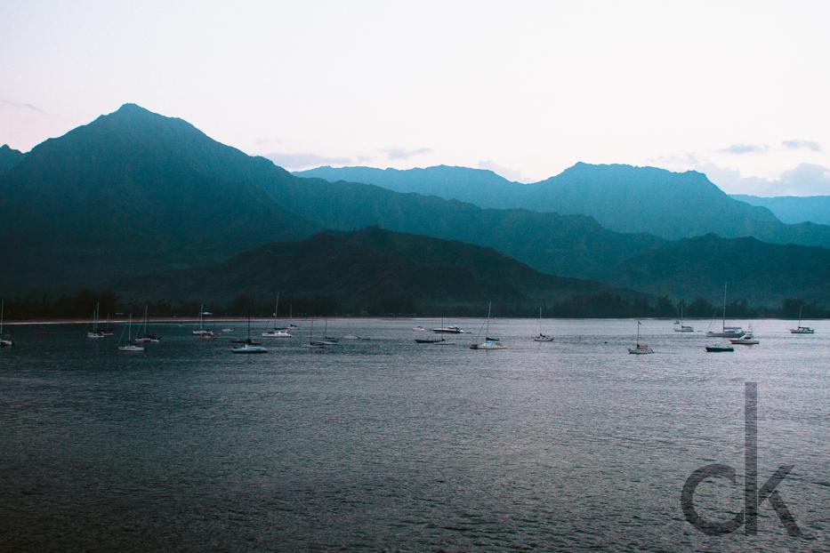 CK-Photo_blog_Kauai-90.jpg