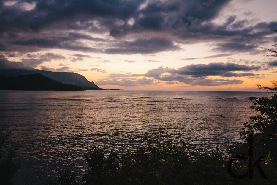 CK-Photo_blog_Kauai-93.jpg