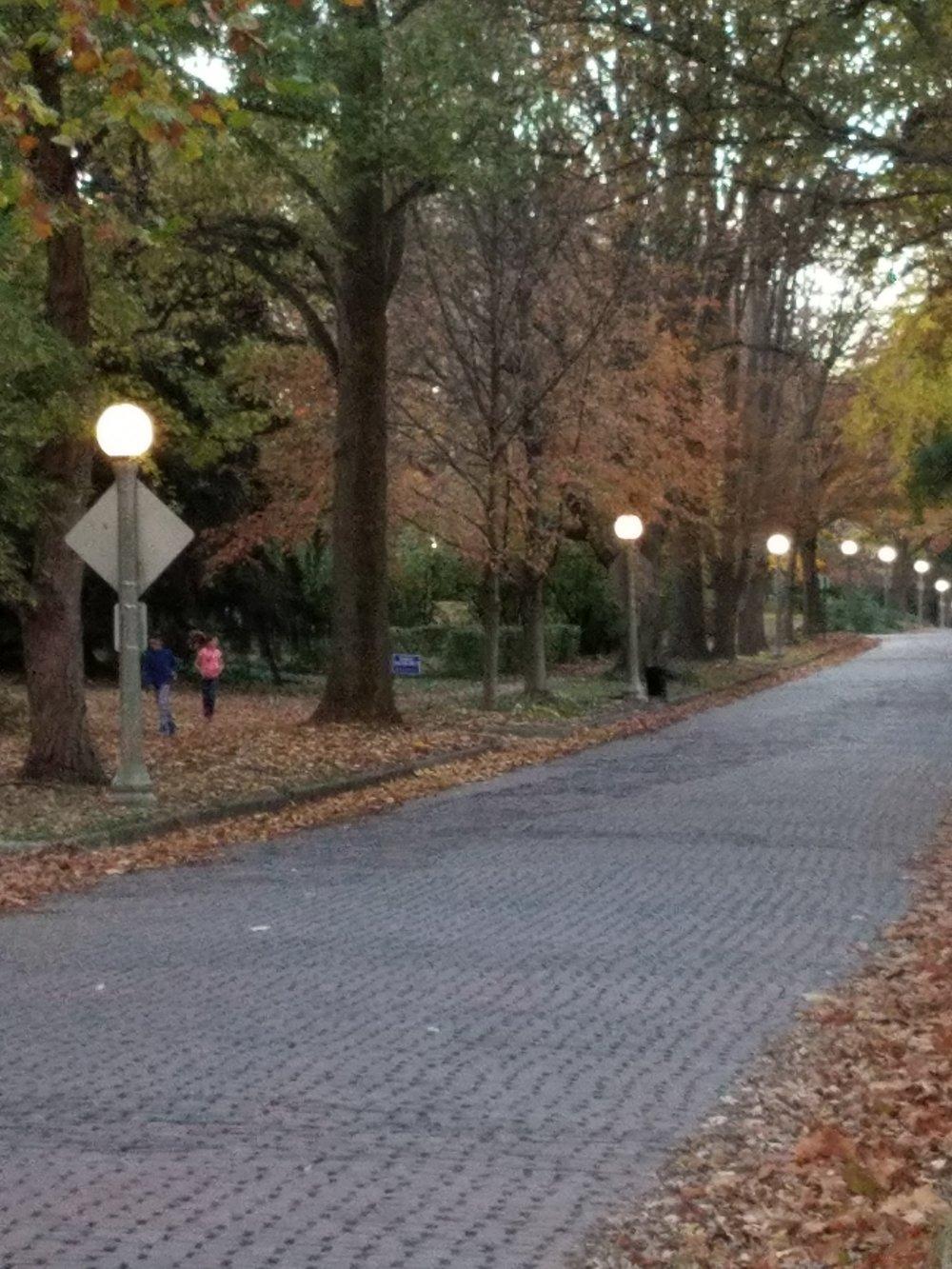 WWL- urbana brick street.jpg