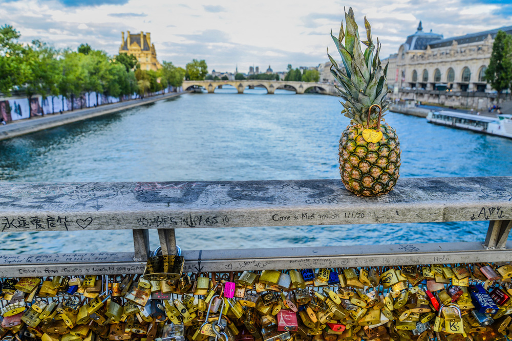 "Nothing beats an afternoon stroll down the Seine River. specially if you are planning on watching the sunset from the bridges full of ""love locks"". Where visitors for years have attached locks with sentimental value, throwing the keys into the Seine River."
