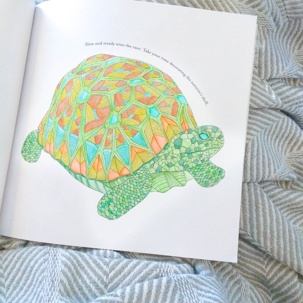 Turtle coloring page | ashleyjoanna.com