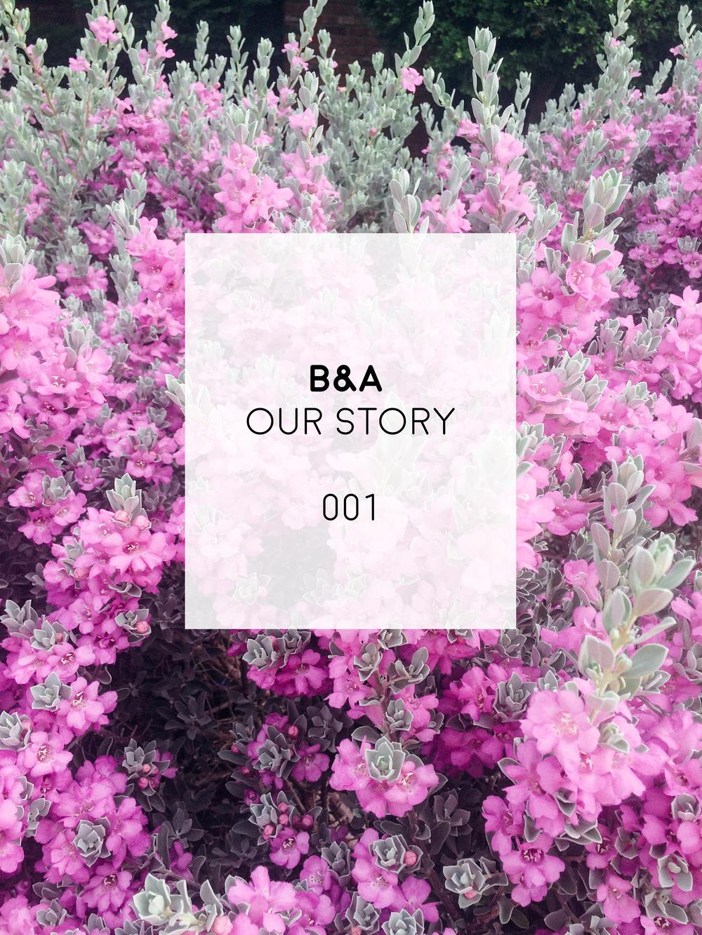 b&a love story 001 | ashleyjoanna.com