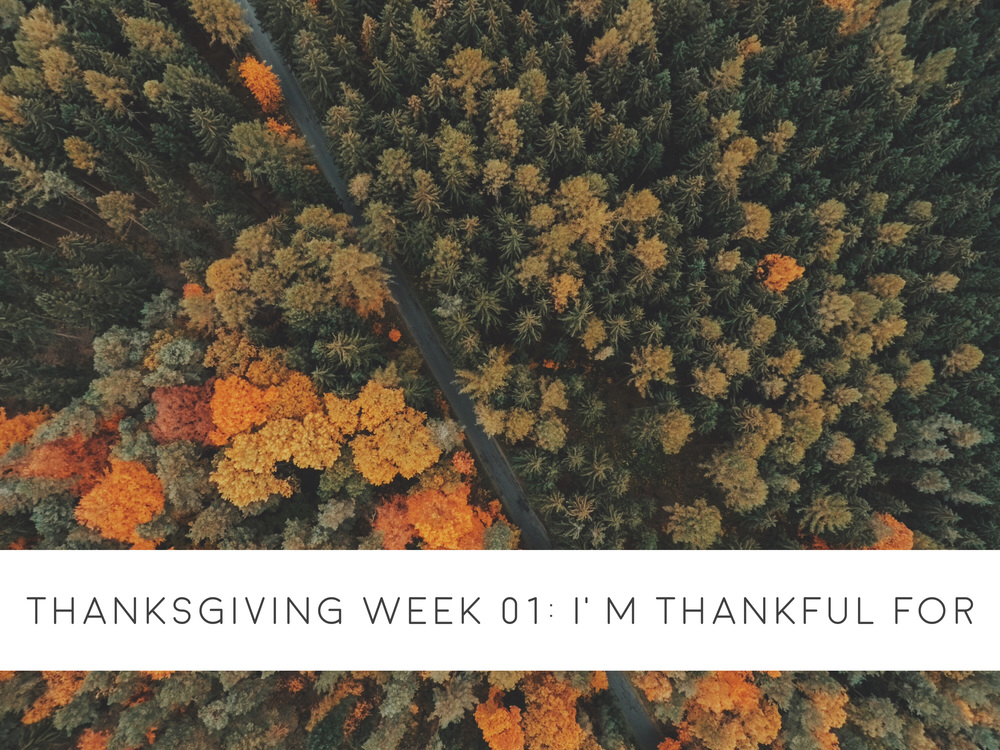 Thanksgiving Week 01 | I'm Thankful For | ashleyjoanna.com