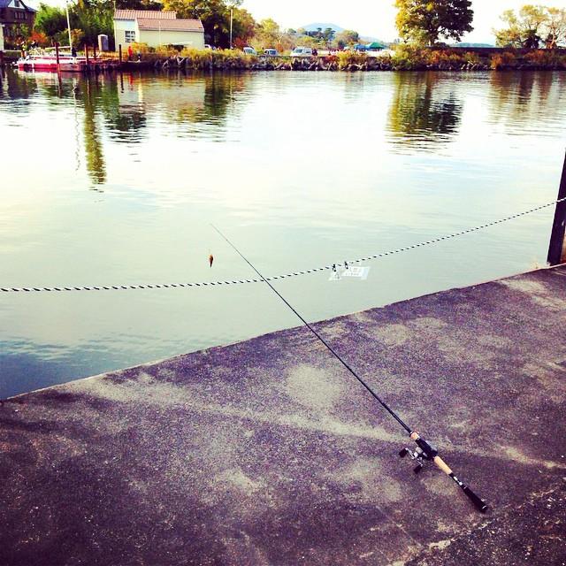 琵琶湖で釣り上げます☻