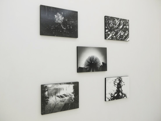 Recto Verso Gallery, Tokyo, Japan2014