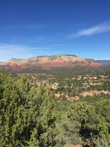 Sedona Red Rock Verticle with trees.jpg