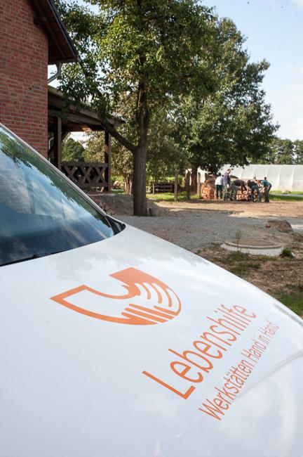 Auszubildende der Stadtverwaltung auf dem Biohof Auguste der Lebenshilfe Werkstätten gGmbH