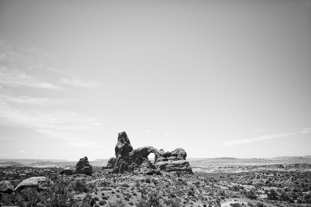Destination-Wedding-Photographer-Moab.jpg