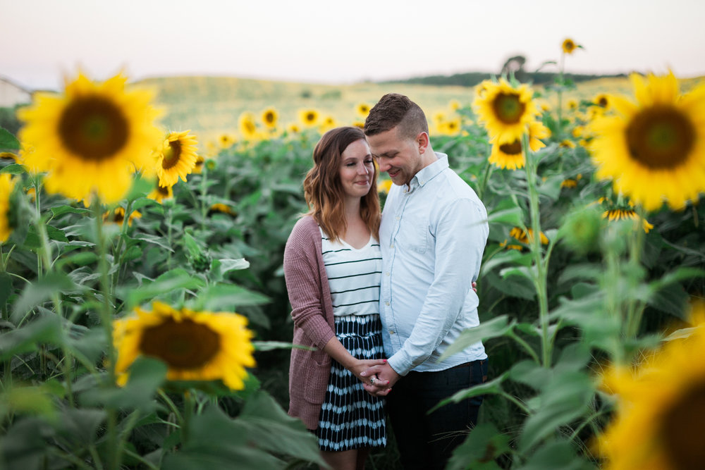 Pope-Farms-Sunflower-Engagement-Session-Madison-Wisconsin_001.jpg