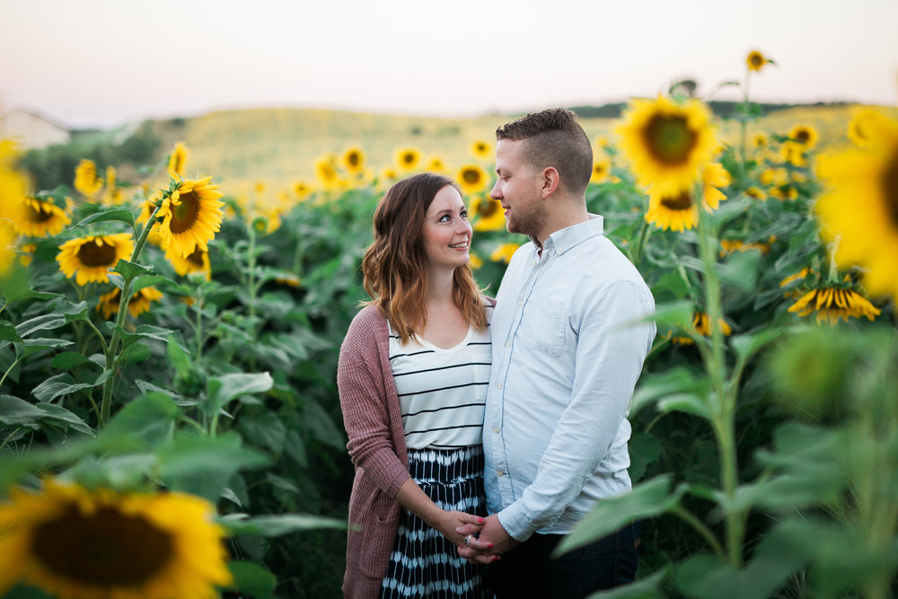 Pope-Farms-Sunflower-Engagement-Session-Madison-Wisconsin_002.jpg