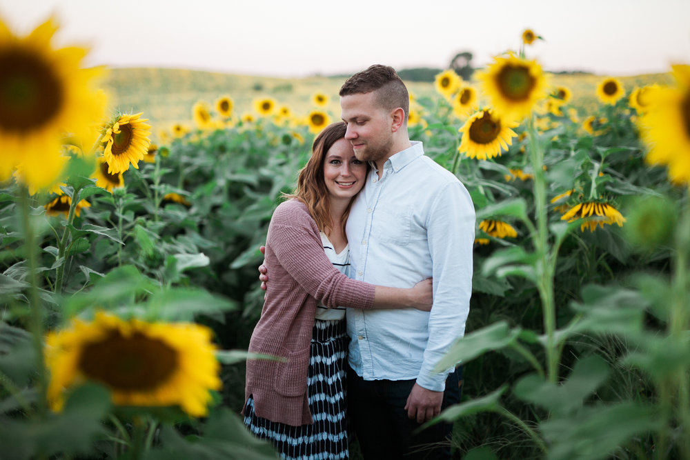 Pope-Farms-Sunflower-Engagement-Session-Madison-Wisconsin_003.jpg
