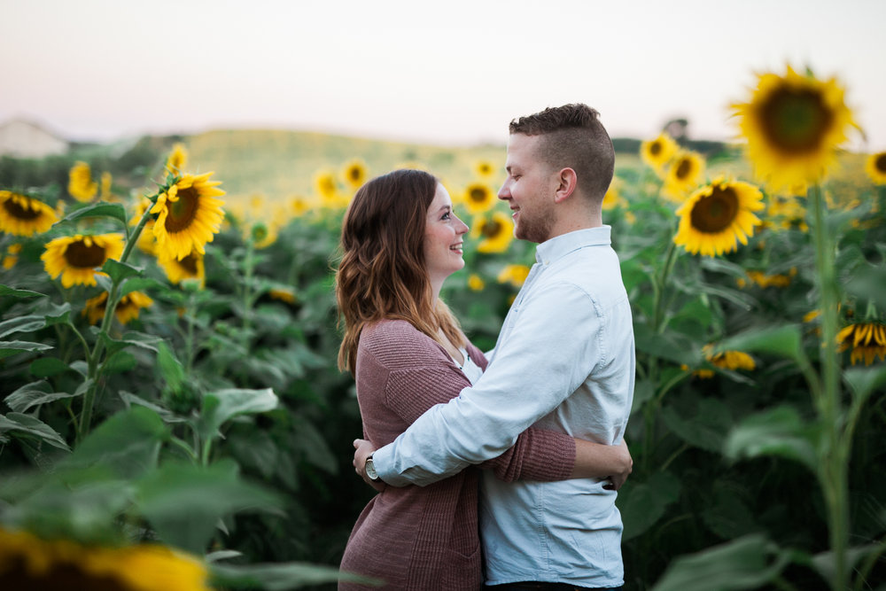 Pope-Farms-Sunflower-Engagement-Session-Madison-Wisconsin_005.jpg
