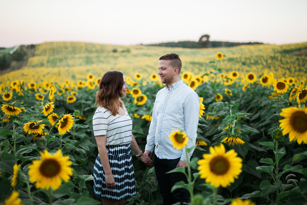 Pope-Farms-Sunflower-Engagement-Session-Madison-Wisconsin_008.jpg