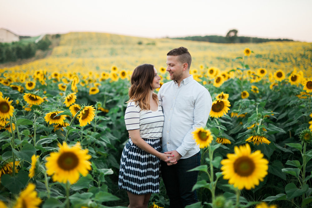 Pope-Farms-Sunflower-Engagement-Session-Madison-Wisconsin_010.jpg