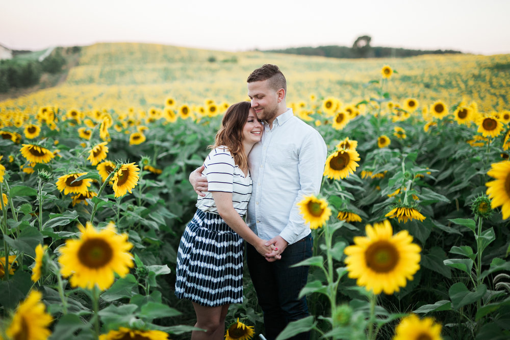 Pope-Farms-Sunflower-Engagement-Session-Madison-Wisconsin_012.jpg