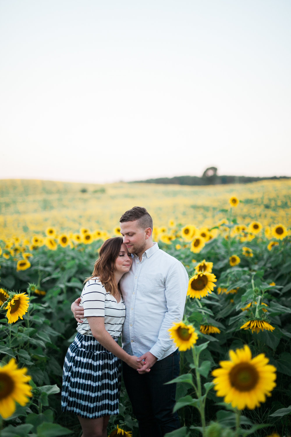 Pope-Farms-Sunflower-Engagement-Session-Madison-Wisconsin_013.jpg